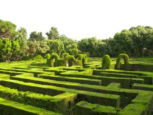 English green labyrinth